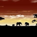 アフリカビジネス、3つの事実